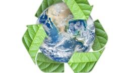 logo eco friendly